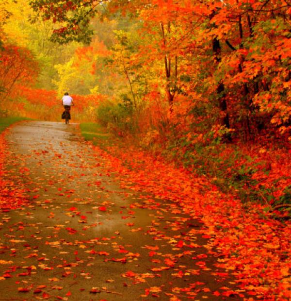 Le cycle des saisons… Tellement plein de sens…